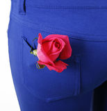 Pink rose in blue pocket Royalty Free Stock Image