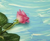 Pink rose on a blue wooden background beauty birthday. Pink rose on a blue wooden background beauty space dayn birthday Stock Photo