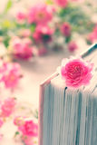 Pink rose and book with roses. In the background Royalty Free Stock Photography