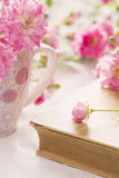 Pink rose and book with roses in the background. Royalty Free Stock Photo
