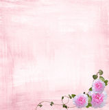 Pink rose border Royalty Free Stock Photo