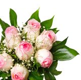Pink Rose Bouquet stock photo