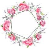 Pink rose bouquet floral botanical flowers. Watercolor background illustration set. Frame border ornament square. vector illustration