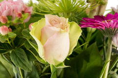 Pink rose in bouquet of lowers Royalty Free Stock Photos