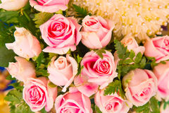 Pink rose bouquets Stock Image