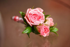 Pink rose boutonniere for groom, wedding decor, close-up Stock Photography