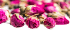 Pink  rose buds isolated on white Stock Photo