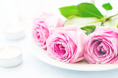 Pink rose with candles Stock Photography