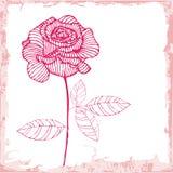 Pink rose card Royalty Free Stock Image