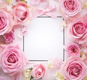 Pink rose with card. Pink rose with paper card royalty free stock photos