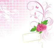 Pink rose with card. Pattern for design Stock Images