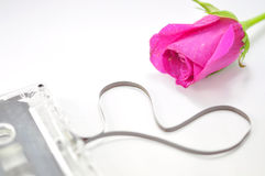 Pink rose and cassette Tape Stock Image