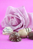 Pink rose and chocolate truffles Royalty Free Stock Photos