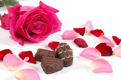 Pink rose with chocolates Royalty Free Stock Photos