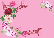 Pink rose corner decoration. Illustration with pink rose corner decoration Royalty Free Illustration