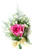 Pink rose corsage Stock Photo