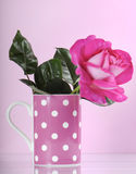 Pink rose and cup Stock Photos