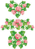 Pink rose design elements Stock Image