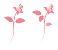 Pink rose. Detailed vector rose flower in cartoon style Stock Photos