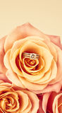 Pink Rose and diamond ring nestled inside. Bouquet of blossoming Royalty Free Stock Photography