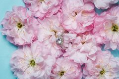 White gold ring with diamonds inside tender pink rose petals. Pink Rose and diamond ring nestled inside. Macro closeup Royalty Free Stock Photo