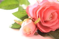 Pink rose and diamond ring for valentine. stock photos