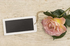 Pink rose with empty small tablet Stock Photo