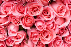pink rose flower bouquet Stock Photos