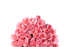 Pink rose flower bouquet isolated Royalty Free Stock Photos