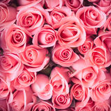 Pink rose flower bouquet vintage Royalty Free Stock Images