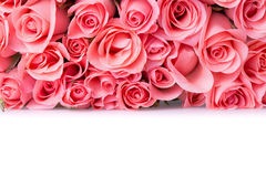 Pink rose flower bouquet Stock Image