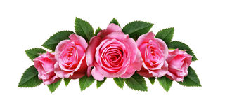 Pink rose flowers arc arrangement Royalty Free Stock Photography