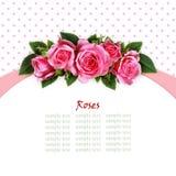 Pink rose flowers arc arrangement Royalty Free Stock Photos