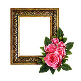 Pink rose flowers arrangement and a frame Stock Photos
