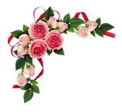 Pink rose flowers and buds arrangement and silk ribbon bow. Isolated on white. Flat lay, top view Royalty Free Stock Photo
