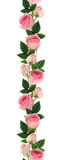 Pink rose flowers and buds line arrangement Royalty Free Stock Photography