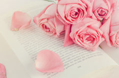 Pink rose flowers with pink petal rose on opened book. Close up of pink pastel rose flower bouquet with pink petal rose on opened book with vintage tone, Vintage Stock Image
