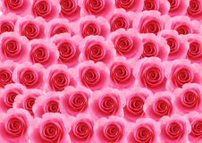 Pink rose flowers textured background Royalty Free Stock Images