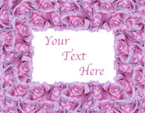 Pink Rose Frame Background Royalty Free Stock Photo