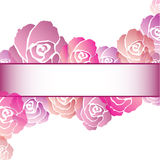 Pink Rose Frame Background Royalty Free Stock Image