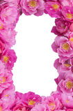 Pink Rose frame ,flowers border,frame,isolated Stock Image