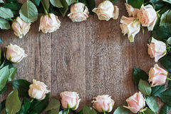 Pink rose frame on a wooden background. Background for spring themes Royalty Free Stock Images