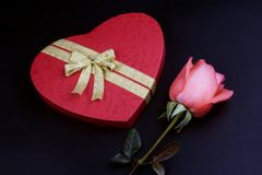 Pink Rose With Gift Box stock photos