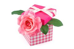 Pink rose in a gift box Stock Photo