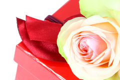Pink rose and gift box. Royalty Free Stock Image
