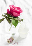 Pink rose in a glass vase on a white surface Royalty Free Stock Photography