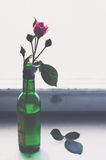Pink rose in a green bottle on old wooden windowsill. Pink rose in a green bottle on old wooden window sill, copy space on light background Royalty Free Stock Image