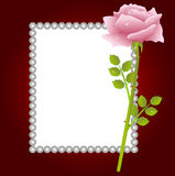 Pink rose and greeting-card Royalty Free Stock Photos