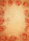Pink rose grunge paper background Stock Image