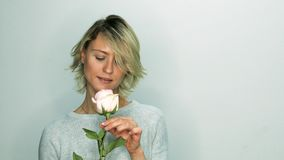 Woman with pink rose. Pink rose in hands of pretty adult woman. The girl sniffs the flower stock video